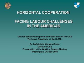 HORIZONTAL COOPERATION  FACING LABOUR CHALLENGES IN THE AMERICAS
