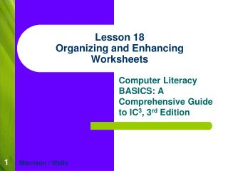 Lesson 18 Organizing and Enhancing Worksheets