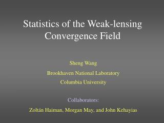 Statistics of the Weak-lensing Convergence Field