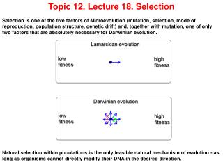 Topic 12. Lecture 18. Selection