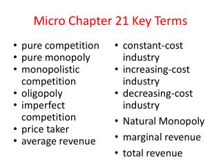 Micro Chapter 21 Key Terms