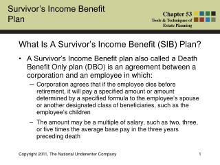 What Is A Survivor's Income Benefit (SIB) Plan?