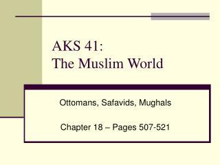 AKS 41: The Muslim World