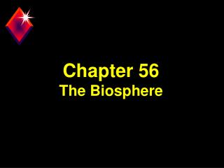 Chapter 56 The Biosphere