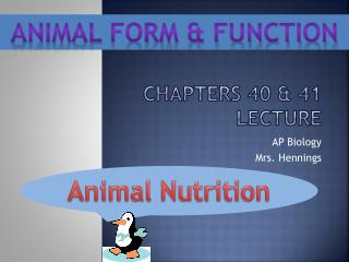Chapters 40 & 41 Lecture