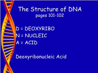 The Structure of DNA pages 101-102