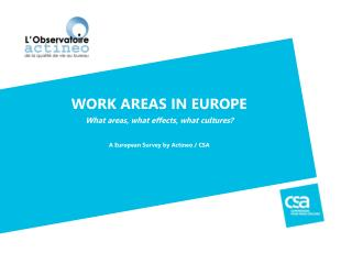WORK AREAS IN EUROPE What  areas,  what effects ,  what  cultures?
