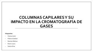 columnas  capilares y su  impacto en la cromatografía de gases