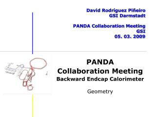 David Rodríguez Piñeiro GSI Darmstadt PANDA Collaboration Meeting GSI 05. 03. 2009