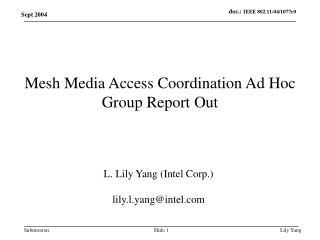 Mesh Media Access Coordination Ad Hoc Group Report Out