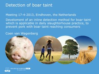 Detection  of  boar taint
