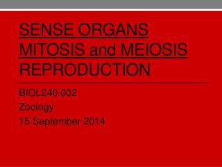 Sense organs mitosis  and  meiosis reproduction