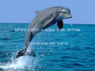 אחידות ושוני בטבע – דולפין ולוויתן