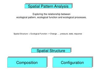 Spatial Pattern Analysis