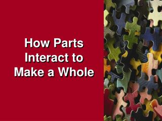 How Parts Interact to Make a Whole