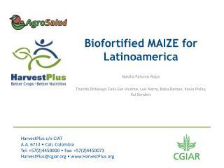 Biofortified  MAIZE for Latinoamerica