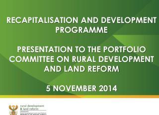 Background on  Recapitalisation  and Development  Programme  (RADP)