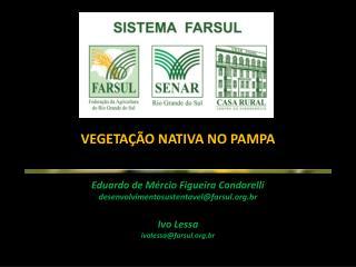VEGETAÇÃO NATIVA NO PAMPA Ed uardo  de  Mércio  Figueira  Condorelli