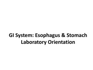 GI System: Esophagus & Stomach Laboratory Orientation