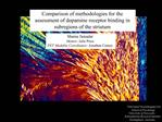 Comparison of methodologies for the assessment of dopamine receptor binding in subregions of the striatum