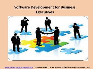 Software Development for Business Executives