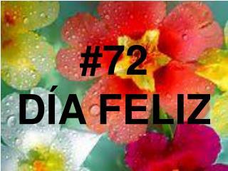#72 DÍA FELIZ
