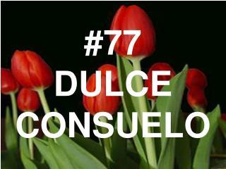 #77 DULCE CONSUELO