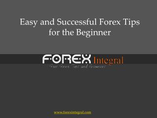 Easy and Successful Forex Tips for the Beginner