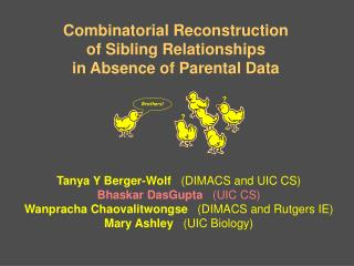 Combinatorial Reconstruction of Sibling Relationships in Absence of Parental Data