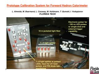 Prototype Calibration System for Forward Hadron Calorimeter