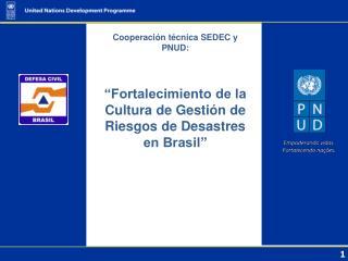 Cooperación técnica SEDEC y PNUD: