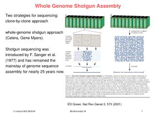 Whole Genome Shotgun Assembly