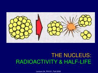 THE NUCLEUS:  RADIOACTIVITY & HALF-LIFE