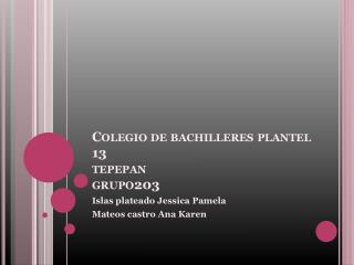 Colegio de bachilleres plantel 13 tepepan grupo203