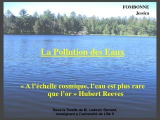 FOMBONNE Jessica      La Pollution des Eaux     A l  chelle cosmique, l eau est plus rare que l or   Hubert Reeves