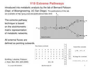 V19 Extreme Pathways