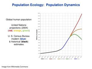Population Ecology:  Population Dynamics
