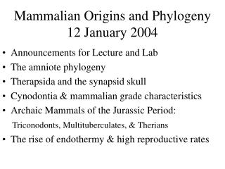 Mammalian Origins and Phylogeny 12 January 2004