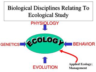 Biological Disciplines Relating To Ecological Study