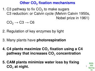 Other CO 2  fixation mechanisms