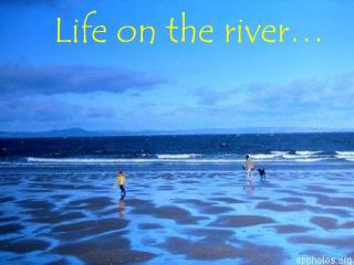 Life on the river…