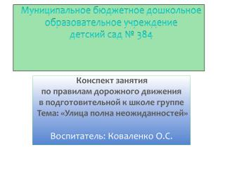 Муниципальное  бюджетное дошкольное образовательное учреждение  детский  сад  № 384