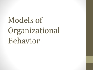 Introduction What is Organizational Behavior