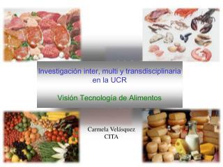 Investigaci n inter, multi y transdisciplinaria en la UCR  Visi n Tecnolog a de Alimentos