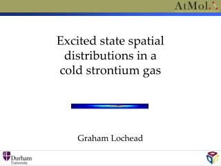 Excited state spatial  distributions in a  cold strontium gas