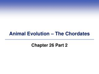 Animal Evolution – The Chordates