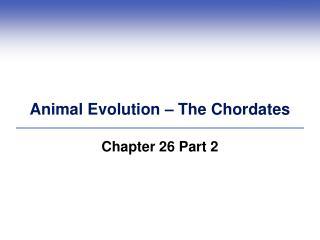 Animal Evolution – The Chordates