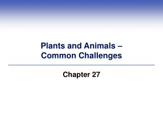 Plants and Animals –  Common Challenges