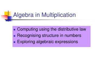 Algebra in Multiplication
