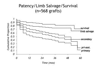 Patency/Limb Salvage/Survival  (n=568 grafts)